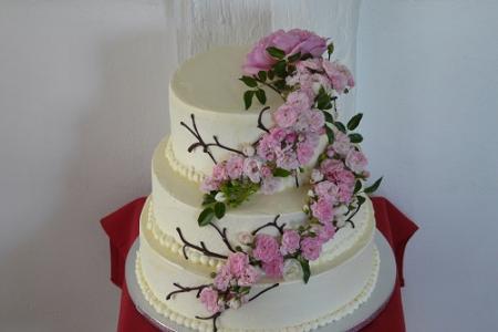 Tortenbär Hochzeit Torte bestellen Bad Nauheim Pah.JPG