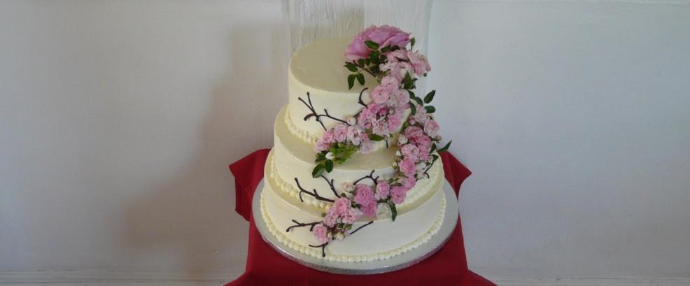Tortenbär Torte bestellen Hochzeit Bad Nauheim Pah.jpg